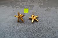 Erfahrungsbericht: UM Schmuck Charm Damen Titanium Edelstahl Seestern Ohrstecker Gold-Ton