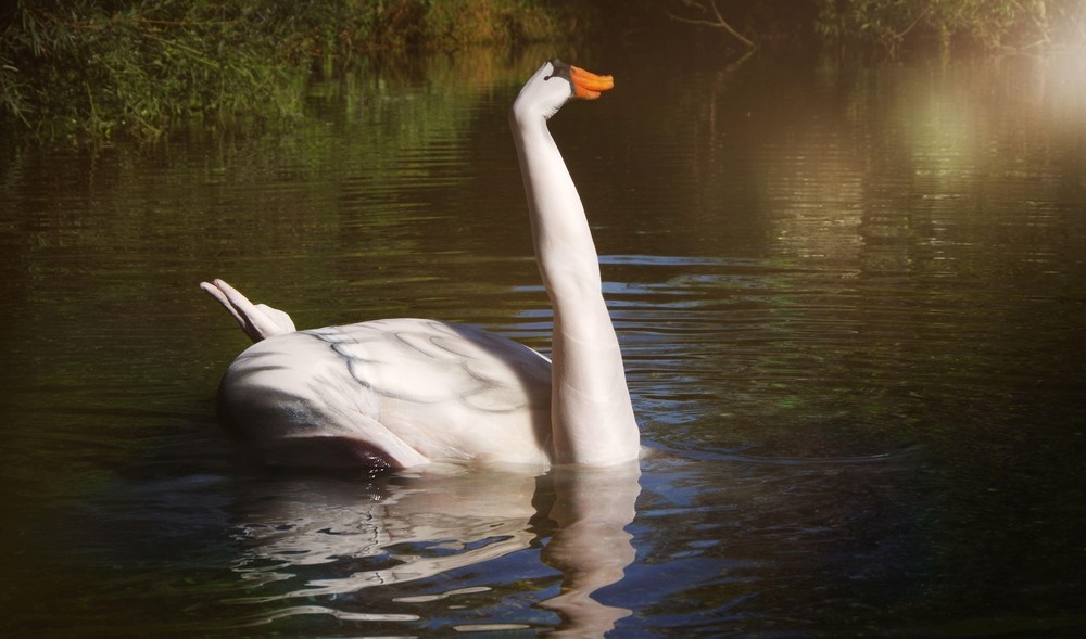 10-swan-Gesine-Marwedel-Body-Painting-on-Location-including-Water-www-designstack-co