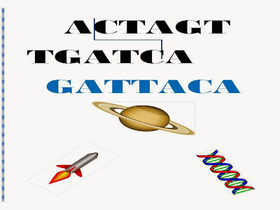 an analysis of gattaca by andrew niccol Gattaca, written and directed by andrew niccol, explores a world five minutes into the future where genetic design destroys ambition and hope, in all but the most ambitious, and most hopeful starring ethan hawke, uma thurman, jude law.