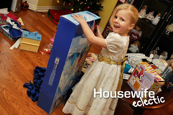 Homemade Frozen Toys