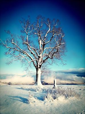 Zimní regenerace a nabití energie u Žítkovských bohyň - wellness víkend pro ženy