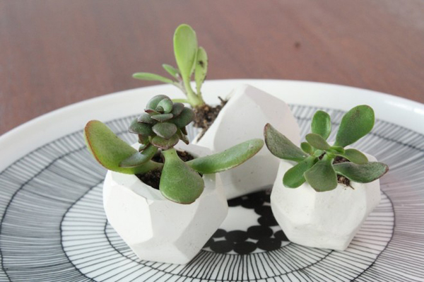 Diy Pots For Small Plants How About Orange