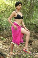Naveena   New South Indian Telugu Actress Spicy Pics ~  11.jpg