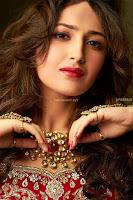 Sayesha Sehgal ~  Exclusive Pics 005.jpg