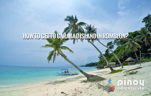 NEW UPDATED How to get to Carabao Island Travel Guide 2017
