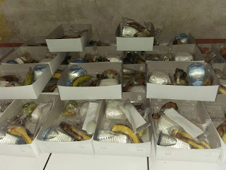 Nasi Kotak Duri Kepa Jakarta Barat