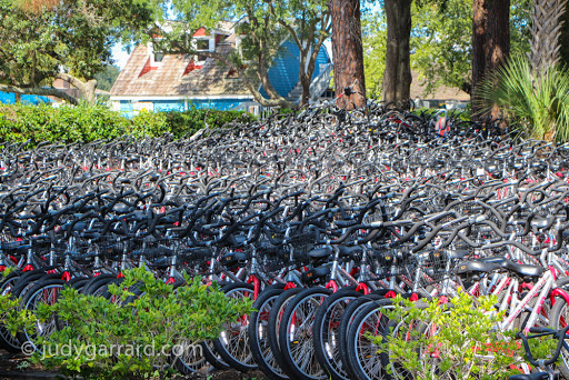 Sea of Bicycles