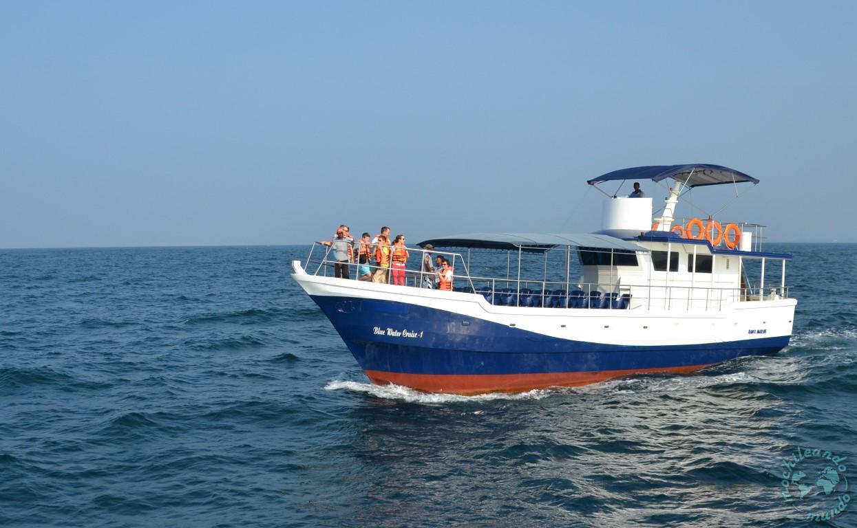 donde ver ballenas en Sri Lanka
