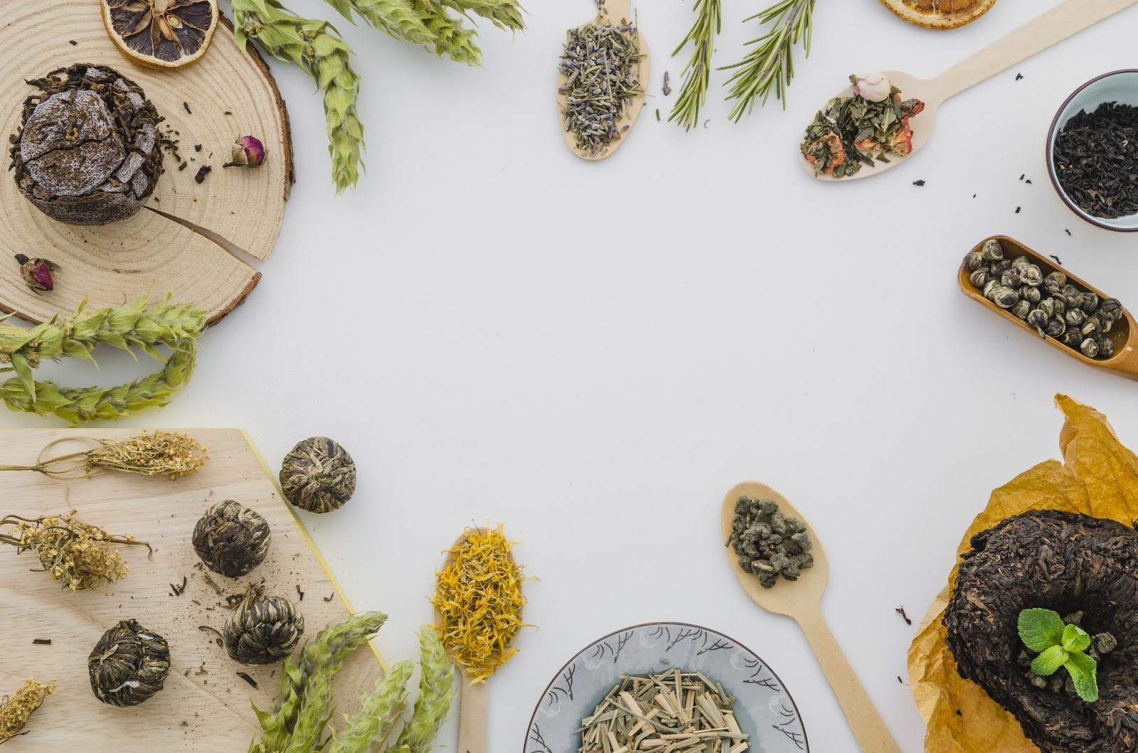 Buat Luka Lebih Cepat Sembuh Dengan Menggunakan Bahan Herbal