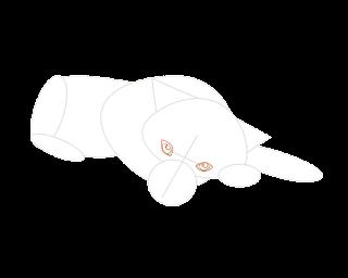 HOW-TO-DRAW-A-BABYHUSKY3