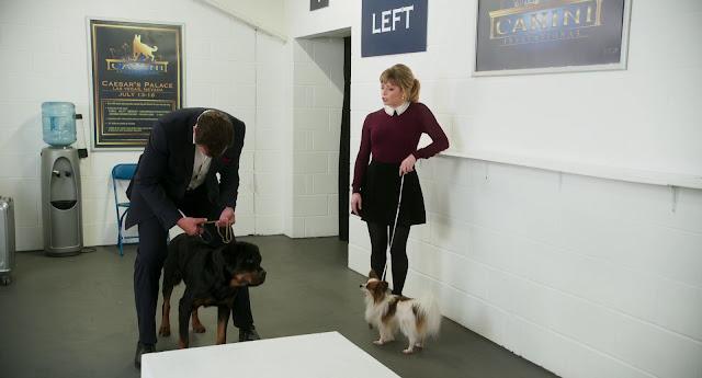 Superagente Canino imágenes hd