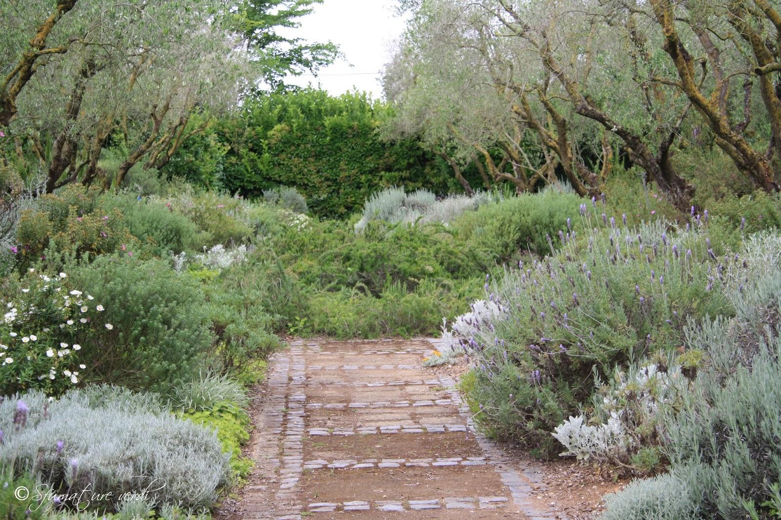 i giardini della landriana sfumature verdi On giardino mediterraneo