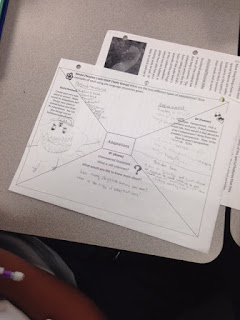Use an Depth and Complexity Frame to teach students about plant and animal adaptations!