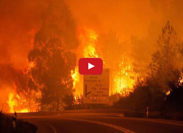 Enorme incendio en Portugal dejó 62 muertos
