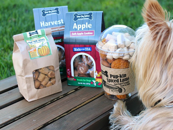 Fall Dog Treats: Three Dog Bakery