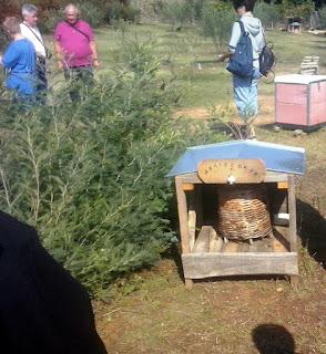 Μια κυψέλη που προσομοιώνει την ζωή των μελισσών μέσα στο δένδρο, είδαν οι Πολωνοί και Λιθουανοί μελισσοκόμοι στην Πιερία.