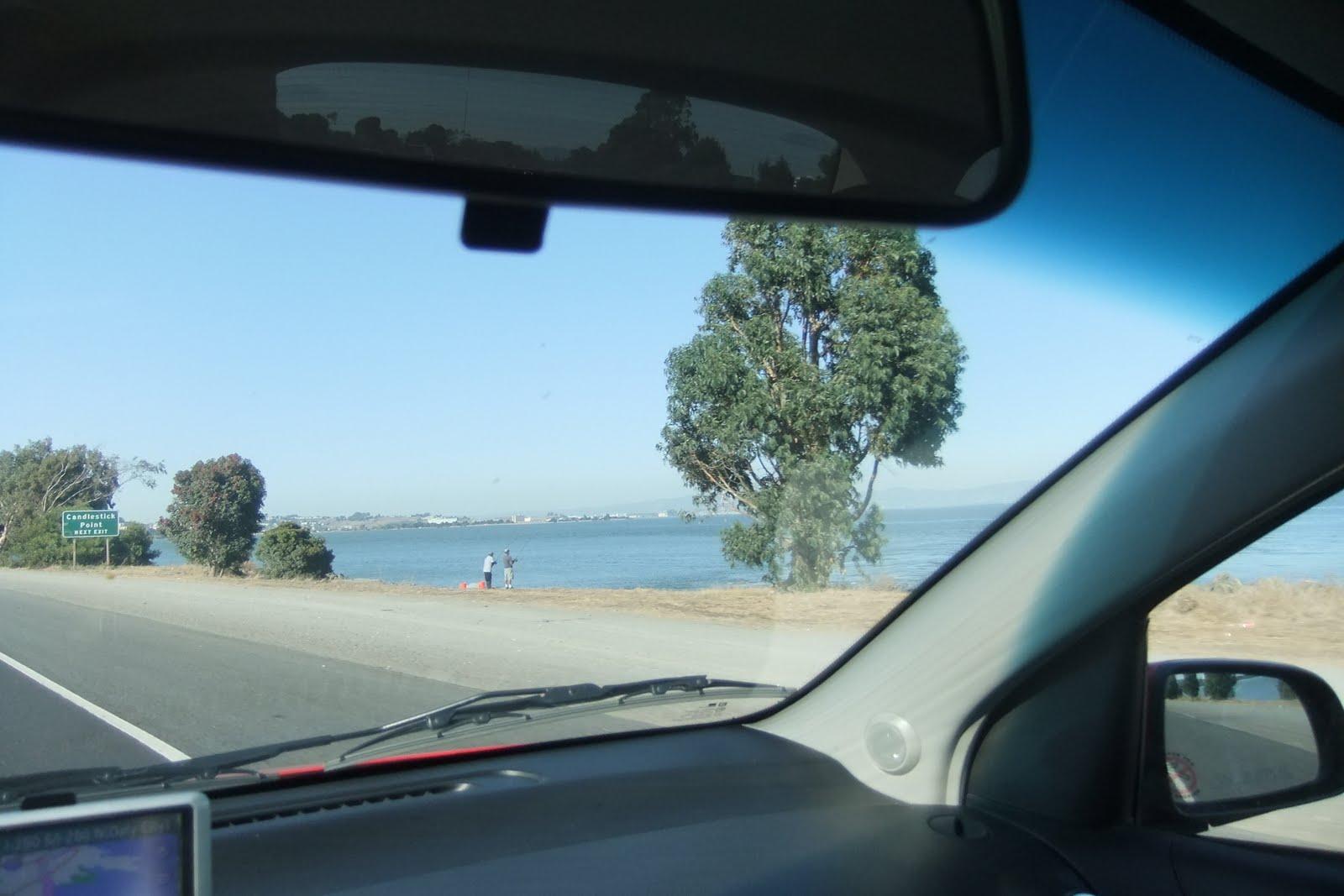 drive-view