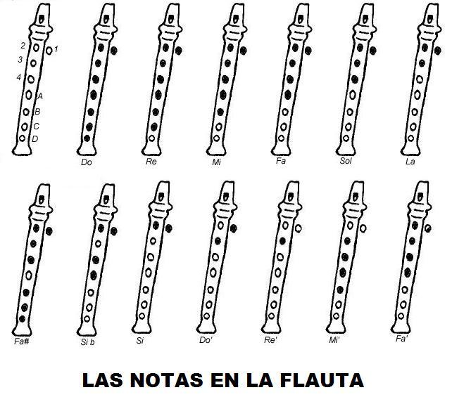 FOYER MÚSICA: Primeros pasos sobre la flauta