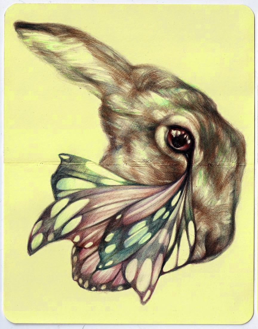 13-Marco-Mazzoni-Surreal-Animal-Drawings-www-designstack-co
