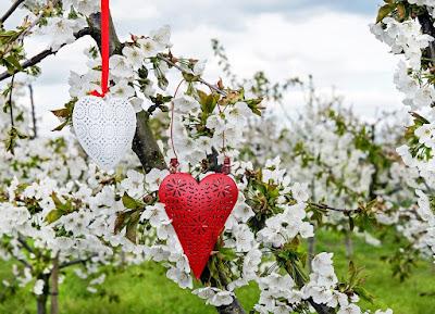 Unas buenas ideas románticas serán muy útiles para mantener viva la llama del amor y hacer feliz a tu pareja