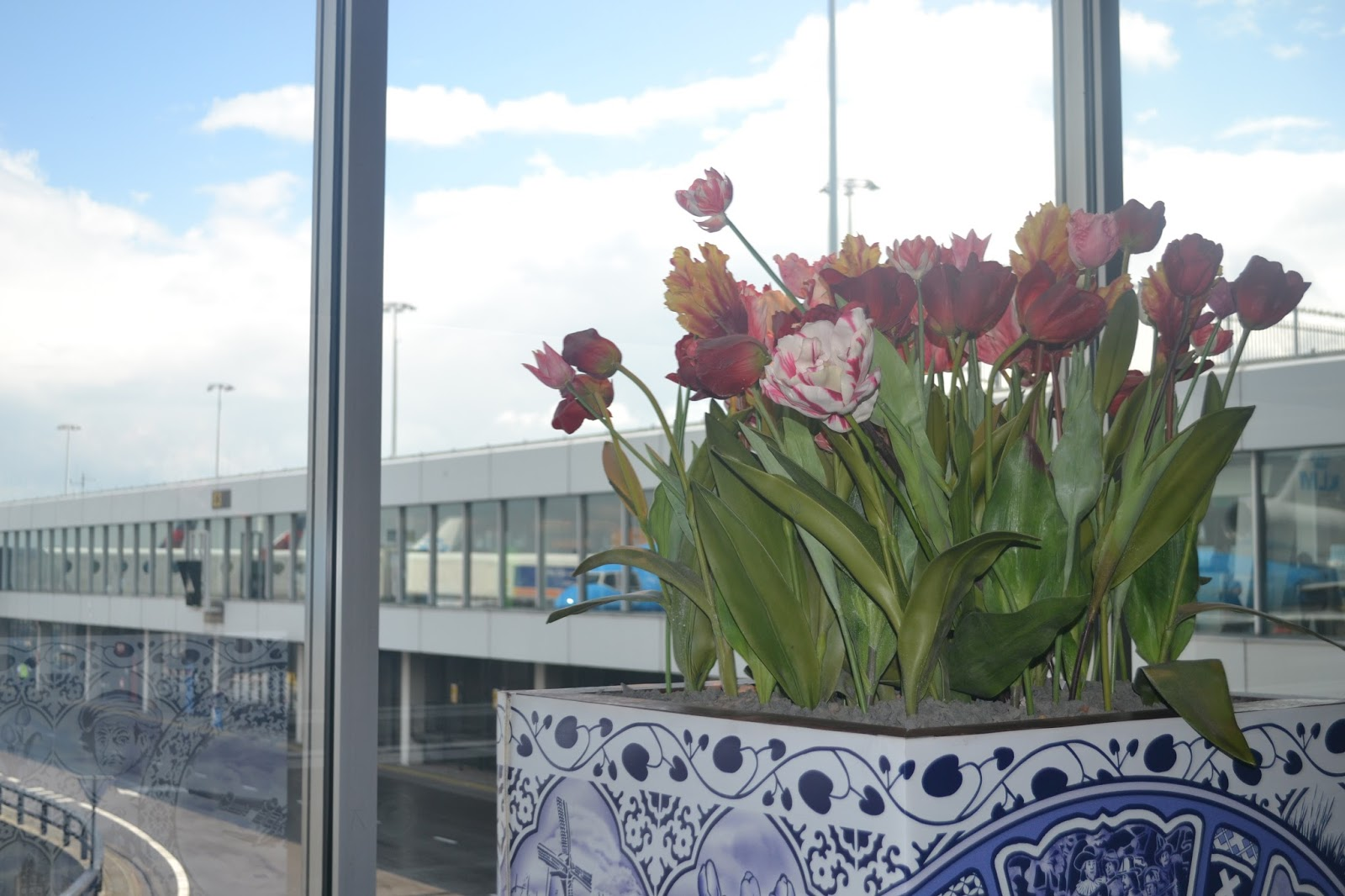 Tulips at Amsterdam Airport