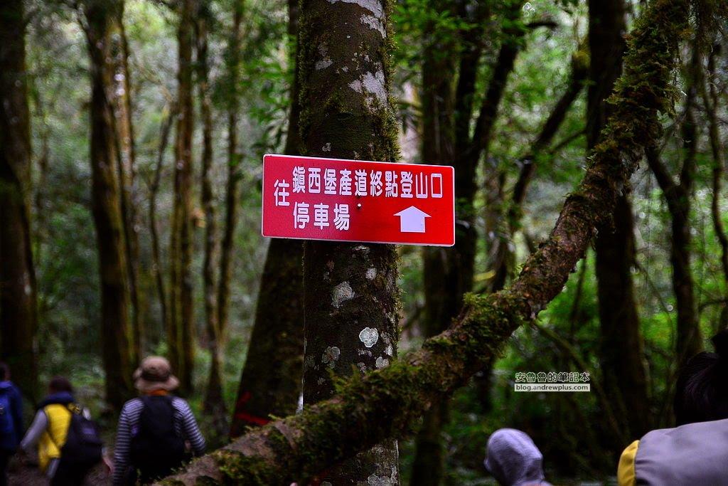 上帝的部落,司馬庫斯,鎮西堡,巨木群,神木,新竹必去景點