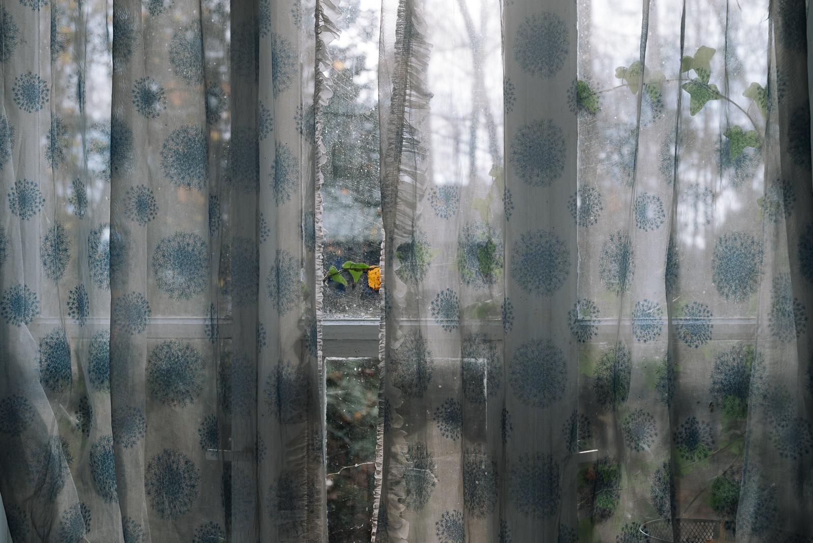 2+2 i domek w lesie