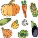 Pentingnya Mengkonsumsi Sayuran