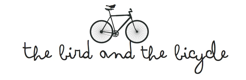 the bird and the bicycle