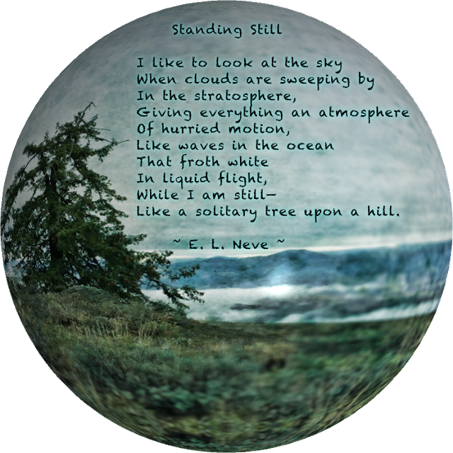 Standing Still, a poem by E L Neve