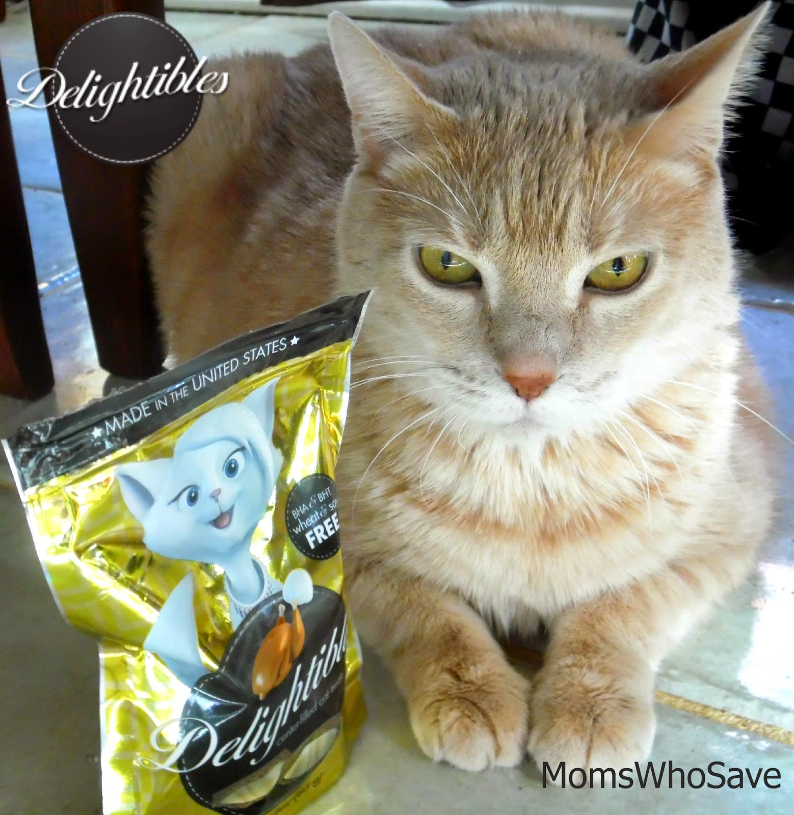 Delightibles Cat Treats (Made in the USA) Review & a Giveaway!