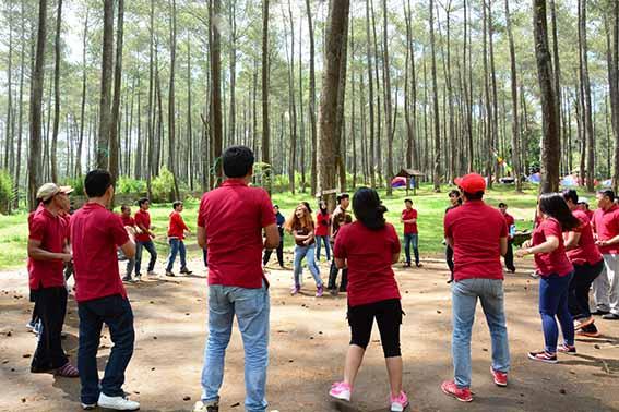 wisata hutan pinus pal 16 lembang