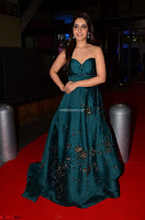 Raashi Khanna in Dark Green Sleeveless Strapless Deep neck Gown at 64th Jio Filmfare Awards South ~  Exclusive 045.JPG