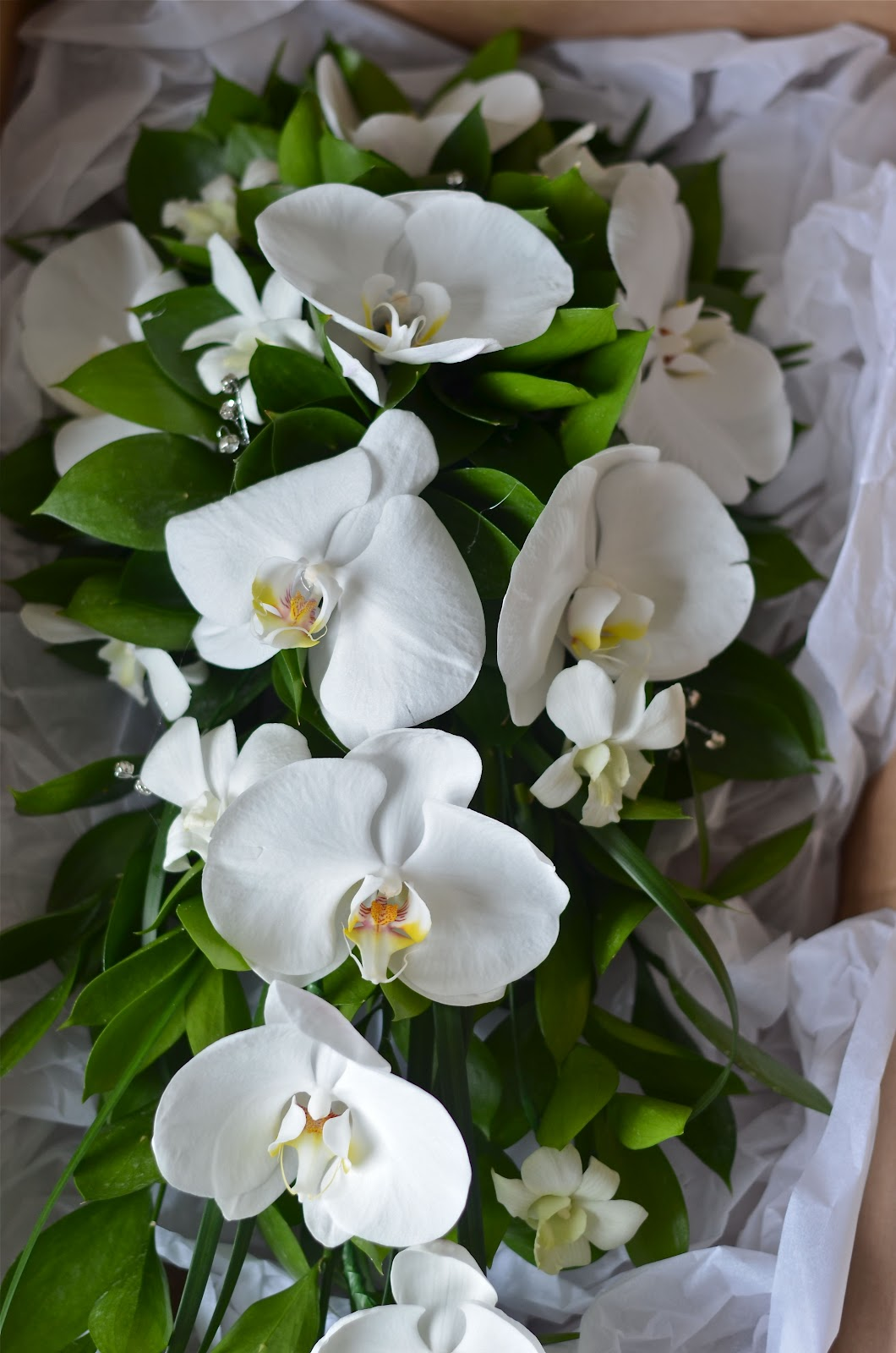 Singapore Orchid Bouquet