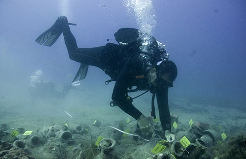 Treasury hidden at the bottom of the sea at Albanian shores, objects dating back to the 8th century BC