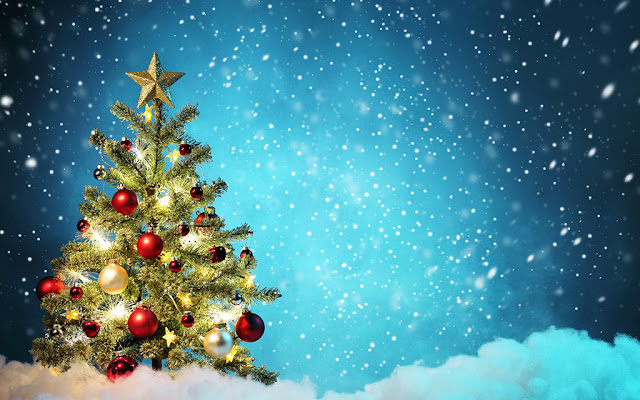 Sự ra đời của cây thông Noel đầu tiên