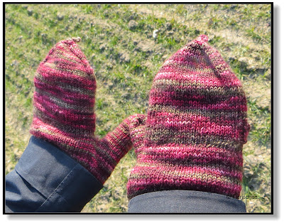 die perfekten Gassi-Handschuhe