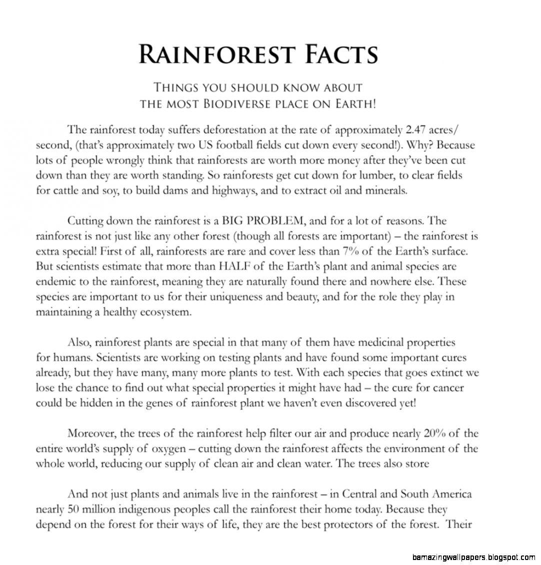 Rainforest Facts