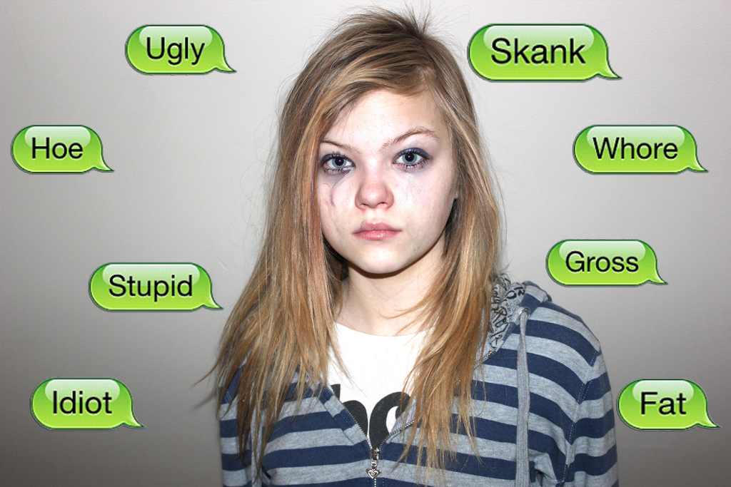 cyber bullies being mean