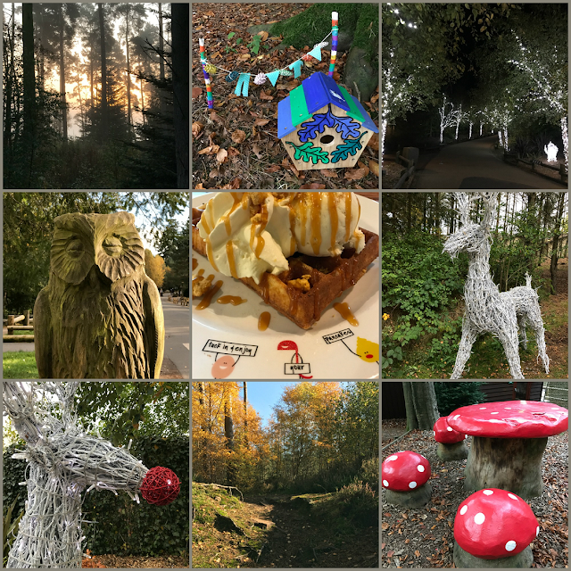 Collage of images from Center Parcs Whinfell Forest