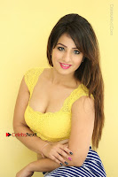 Cute Telugu Actress Shunaya Solanki High Definition Spicy Pos in Yellow Top and Skirt  0206.JPG