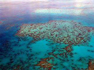 Austrália-grande-barreira-de-corais