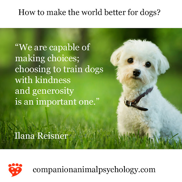 Dr. Ilana Reisner on choosing to train dogs with kindness and generosity