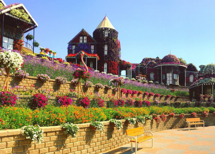 Beautiful Miracle Garden in Dubai