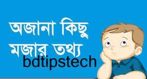 মজার তথ্য-bdtipstech