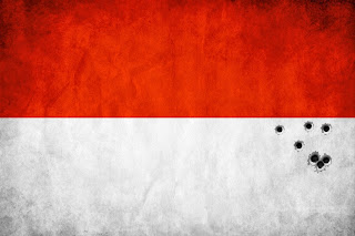 Bullet-riddled Indonesian flag