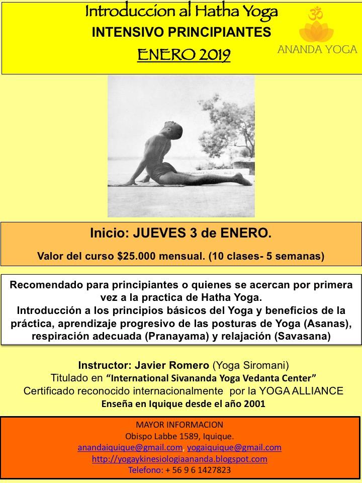 Certificado reconocido internacionalmente por la YOGA ALLIANCE Enseña en  Iquique desde el año 2001. . MAYOR INFORMACION Obispo Labbe 1589 3c9500beeefd
