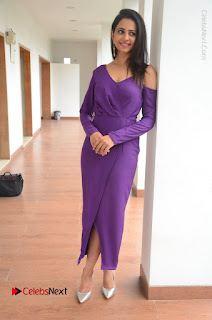 Actress Rakul Preet Singh Latest Stills in Beautiful Long Dress  0139.JPG