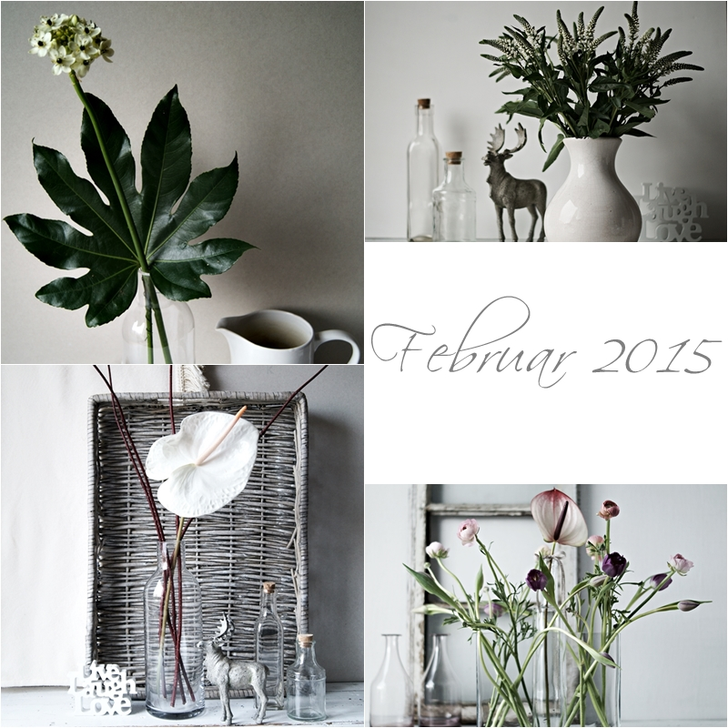 Blog + Fotografie by it's me! - Collage Friday Flowerday - Februar 2015