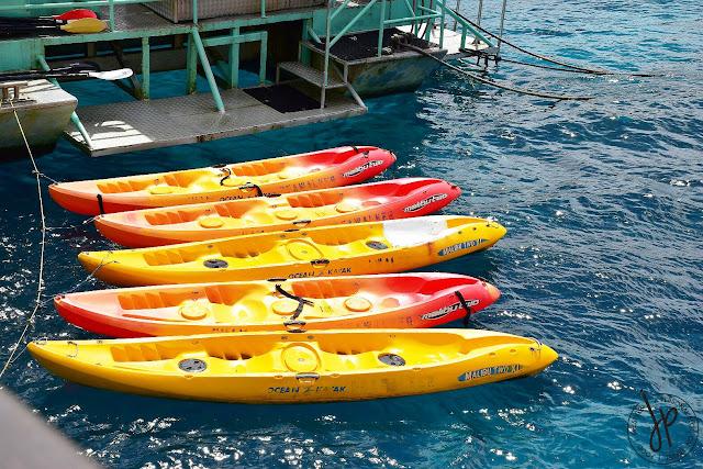 kayaks on ocean